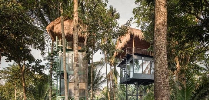 Un hotel en la copa de una palmera