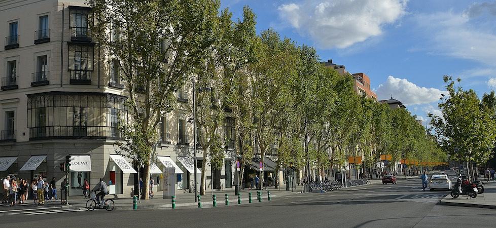 El 'family office' de los Montejo pone a la venta dos locales 'prime' en Madrid por 20 millones