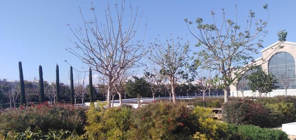 Parc Central de Valencia
