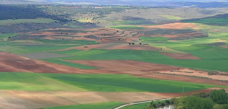 Juan Abelló y la Casa Alba, en el trono de los grandes propietarios de tierra de España